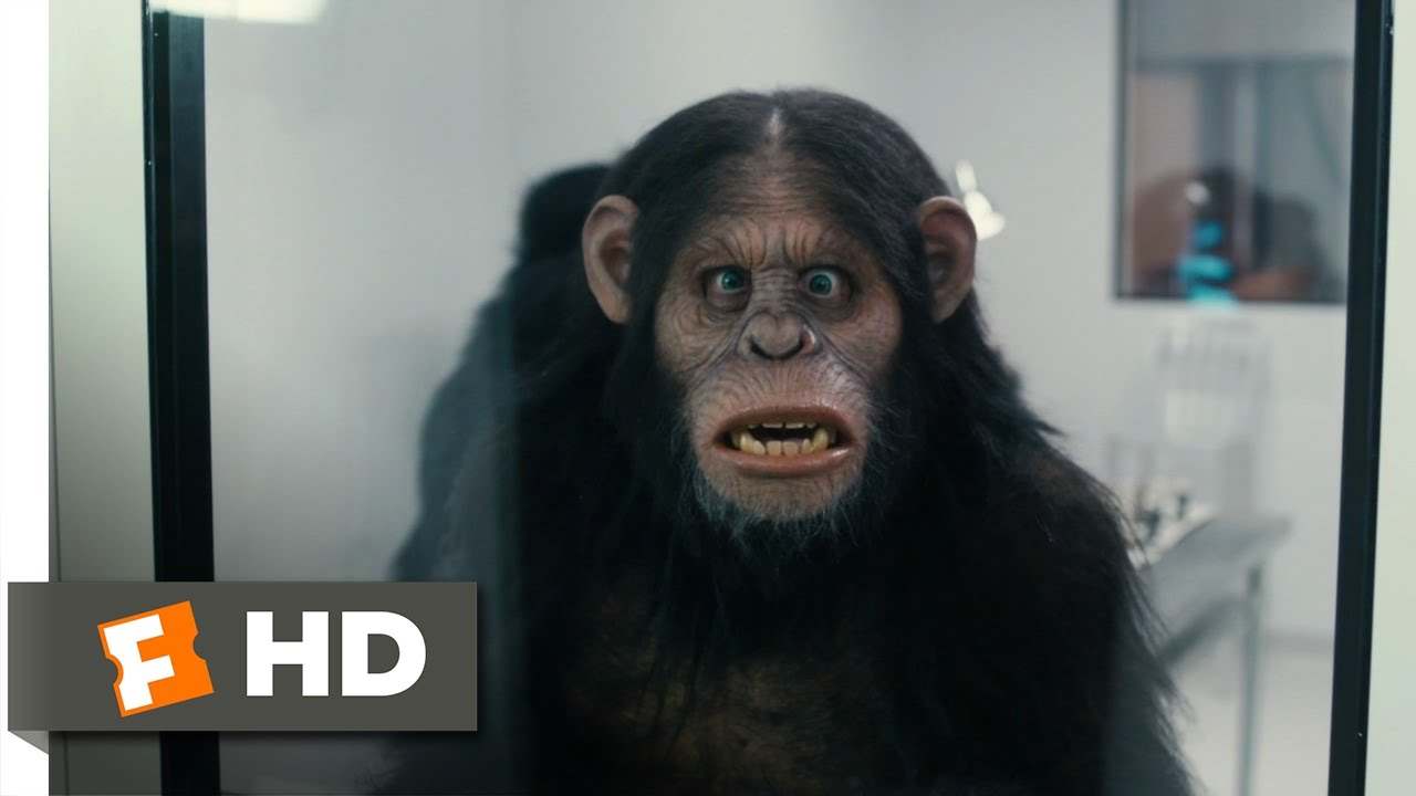 Scary Movie 5 2013 Rise Of The Apes Scene 6 9 Movieclips Youtube