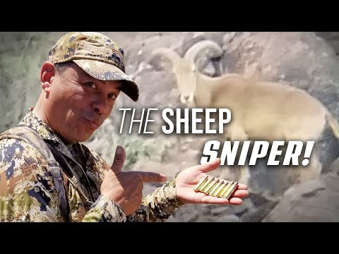 The Sniper's Roost - Wild Sheep Hunting In Texas