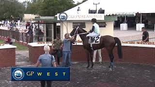 Gulfstream Park West Replay Show | October 12, 2019