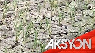 Epekto ng El Niño, posibleng maranasan pa hanggang Mayo