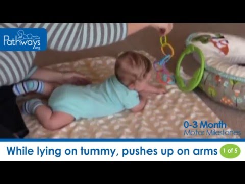 bbbb02a77 The 0 to 3 Month Baby Motor Milestones to Look For - YouTube