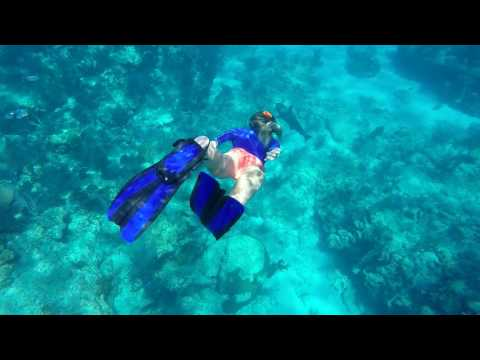 Snorkeling Looe Key 2017