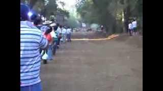 2da Carrera de Galgos Mayulermo Chillan Chile 13 01 2013