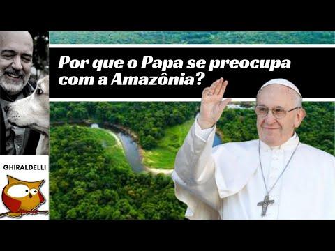 Por que o Papa se interessa pela Amazônia?