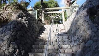 井の国 八柱神社 2016