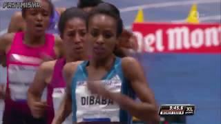 Genzebe Dibaba sets 5000m World Indoor Record   Stockholm 2015