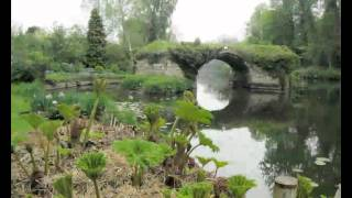 Popular Videos - Warwick & The Mill Garden