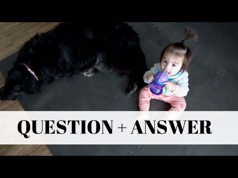 Q + A | DOGS, HOW WE MET, SOOTHER WEENING & MORE!