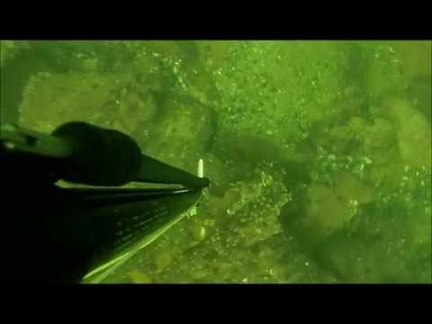 Pesca Subacuatica Uruguay