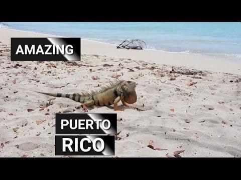 Isla del Encanto - Amazing Puerto Rico 🇵🇷 | Caribbean Paradise