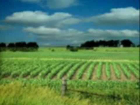 Buy Agriculture Properties Rajasthan