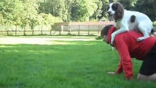 The Amazing  Magic Trick Dog - Superdog