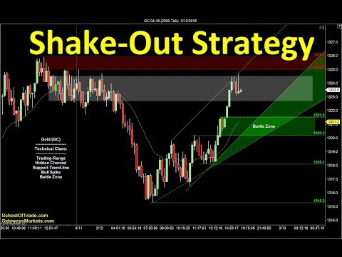 Shake-Out Trading Strategy | Crude Oil, Emini, Nasdaq, Gold & Euro