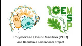 Geneducation#11: PCR, Leiden team and their Rapidemic project
