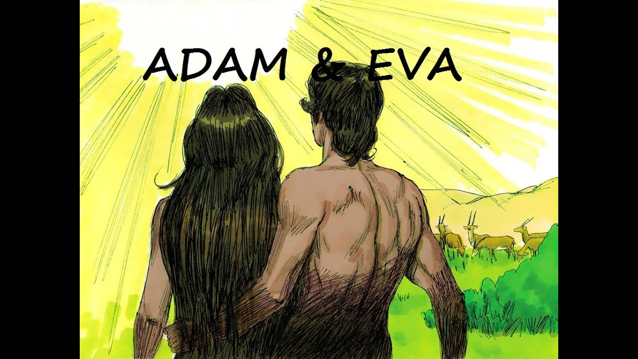 De Bijbel Voor Kids 1 De Schepping Adam Amp Eva Het
