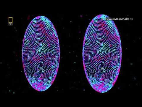 EVRENİN Ötesine YOLCULUK - Çoklu Evren, Uzay, Uzay Belgeseli, Bilim, Bilim Belgeseli