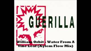 William Orbit - Water From A Vine Leaf (Xylem Flow Mix)
