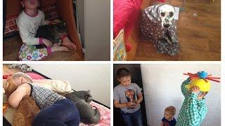 Жизнь МНОГОдетной семьи ВЛОГ: Отдай ЗУБ \ ДР Данила \ Как жить с кучей животных???