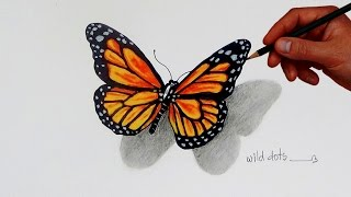 butterfly easy draw drawing simple sketch butterflies drawings painting 3d pencil colored prismacolor