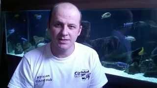 How To Calculate Aquarium Volume - Totw #7