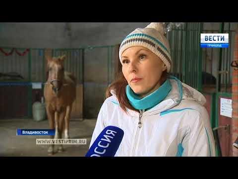 Скандалом обернулось участие приморской сборной по конному спорту  в международных соревнованиях