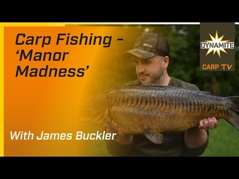 VIDEO* Manor Madness - Carp Fishing on Linear - Dynamite Baits