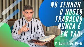 No Senhor o nosso trabalho nunca é em vão! - 1Co 14-16