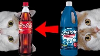 Experiment - Cola vs Bleichmittel 😖 + Johnny, Isabella und Bombel!