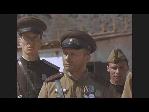 Военные Фильмы о 'ШТРАФНОМ БАТАЛЬОНЕ СТАЛИНСКОГО РЕЖИМА' 1941-45 ! Военное Кино HD Video !