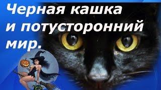 Необъяснимые явления. Черная кашка и потусторонний мир.(, 2016-09-01T19:12:06.000Z)