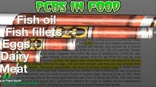 V kterých potravinách najdeme polychlorované bifenyly (PCB)?