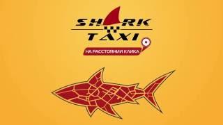 Shark taxi - онлайн сервис заказа такси(, 2016-09-01T06:47:08.000Z)
