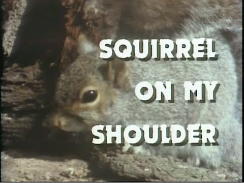 Twelve things about Squirrels that will blow your mind