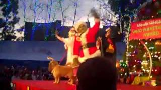 The 13 Days of GRINCHmas Whoville Tree Lighting