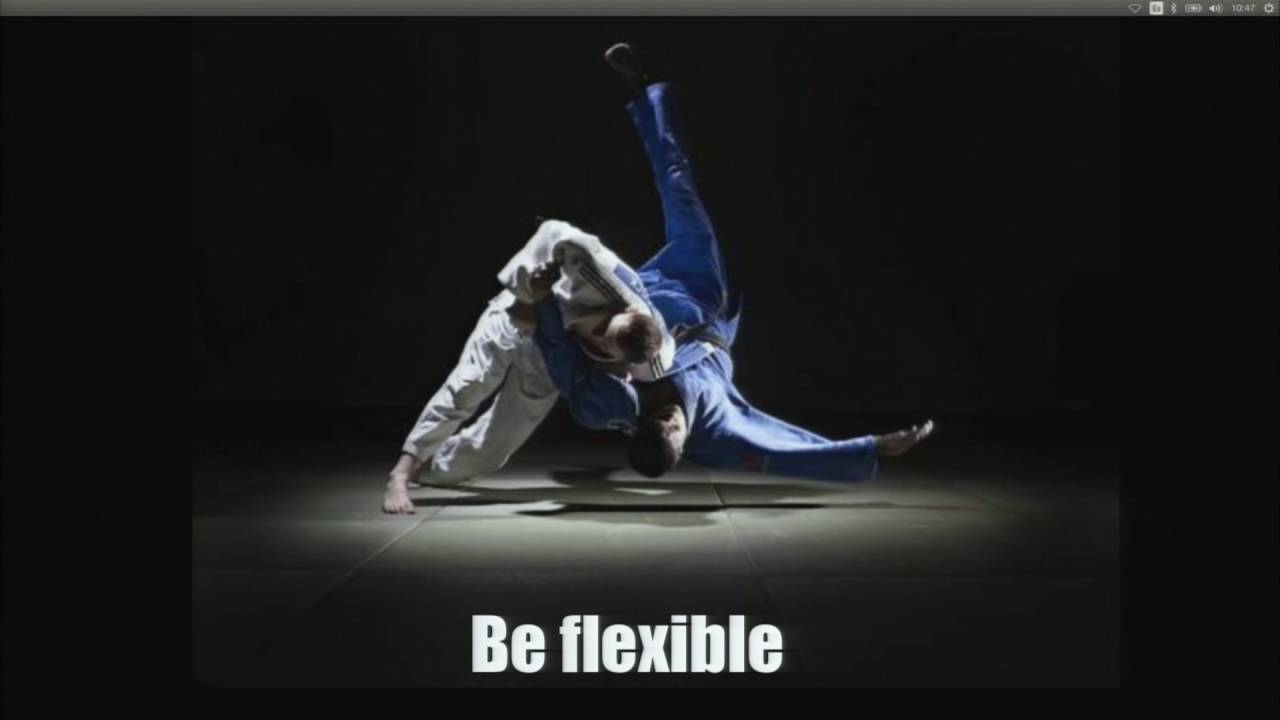 Image from Interactive data Kung Fu with Shaolin