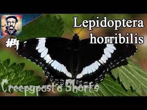 """Lepidoptera horribilis"" - Tintenbaron Creepypasta Short #4 [GERMAN]"