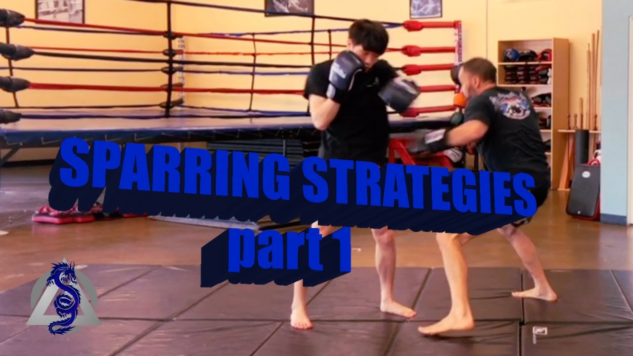 Sparring Development Essential strategies for Success in the Ring