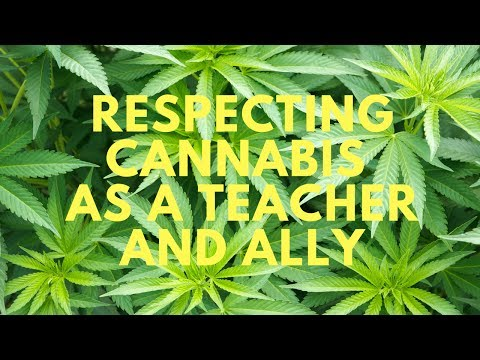 Cannabis as a Teacher and Ally for Spiritual Growth