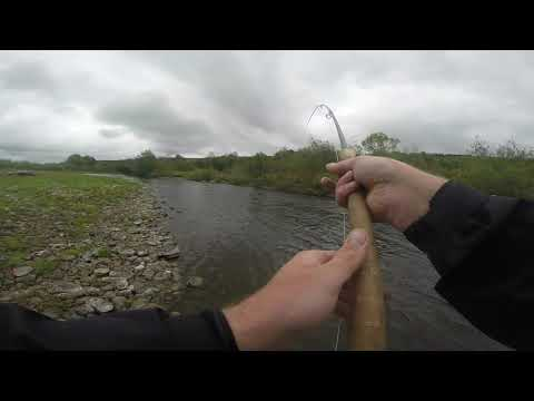 River Spey Salmon Fishing 20/5/19 Brae 1