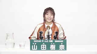 AKB48 49thシングル 選抜総選挙 アピールコメント SKE48 チームS所属 山...