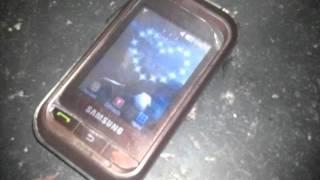Samsung Champ GT-C3303 (Thats all what it has)