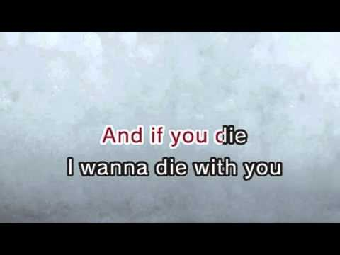 System Of A Down - Lonely Day (Karaoke and Lyrics Version)