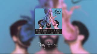 Cash Cash feat. Sofia Reyes - How To Love (Acoustic) (Lyrics)