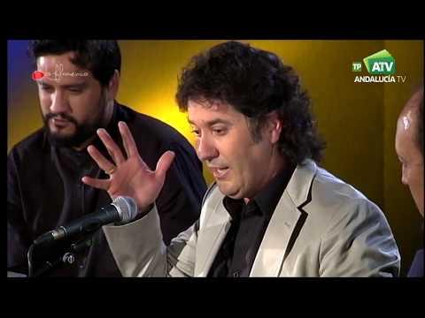 Lo Flamenco    Cantes por alegrías de Julián Estrada