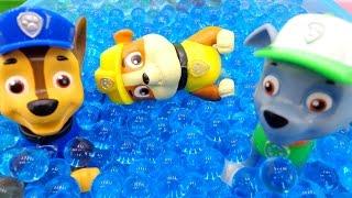 воду в бассейне видео