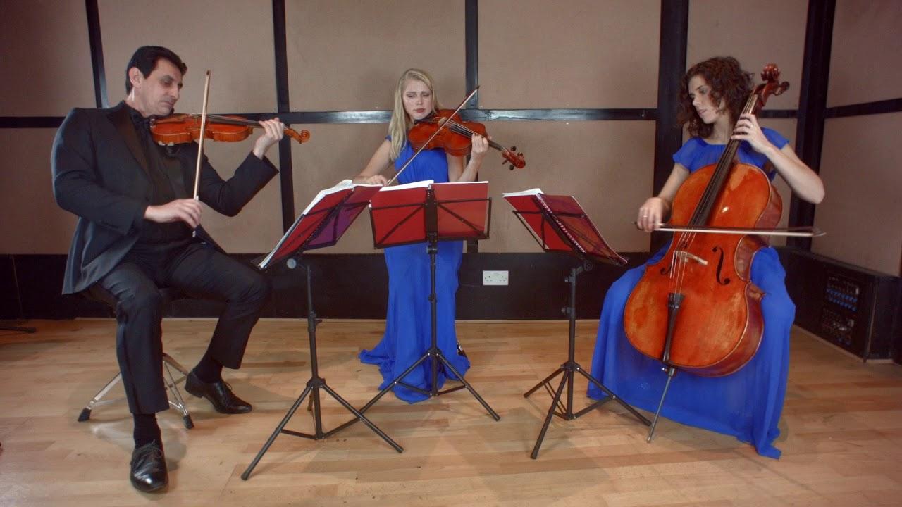 Book Giardino Strings, String quartet in London - Encore