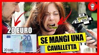 20 Euro se Mangi una Cavalletta - IN CAMBIO DI SOLDI EP.4 - theShow