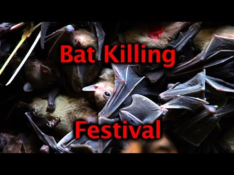 Bat Killing Festival in Arunachal Pradesh, India