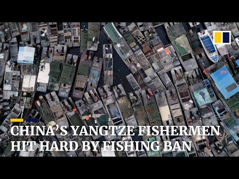 China's Yangtze fishing communities struggle amid 10-year fishing ban