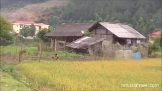Ecotourism travel Vietnam Mu Cang Chai Terraced Rice Fields